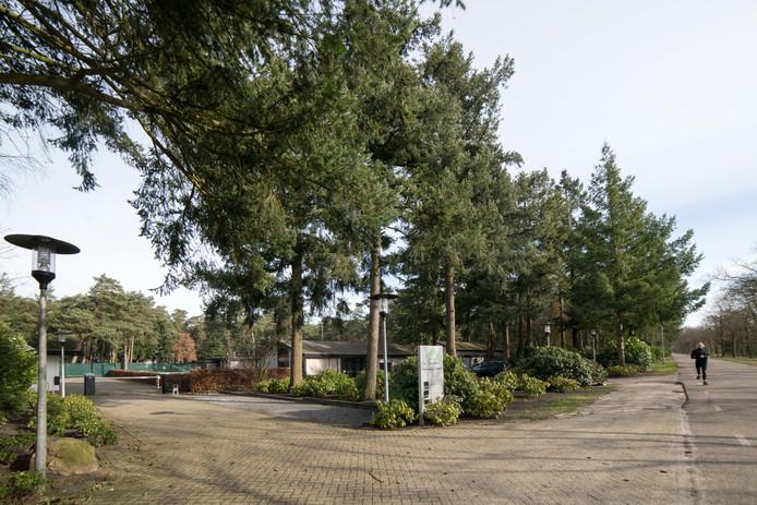 Ook Dennenhoek wordt woonwijk, met arbeidsmigranten als buren.